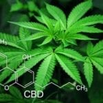 Molecular view of CBD and Hemp