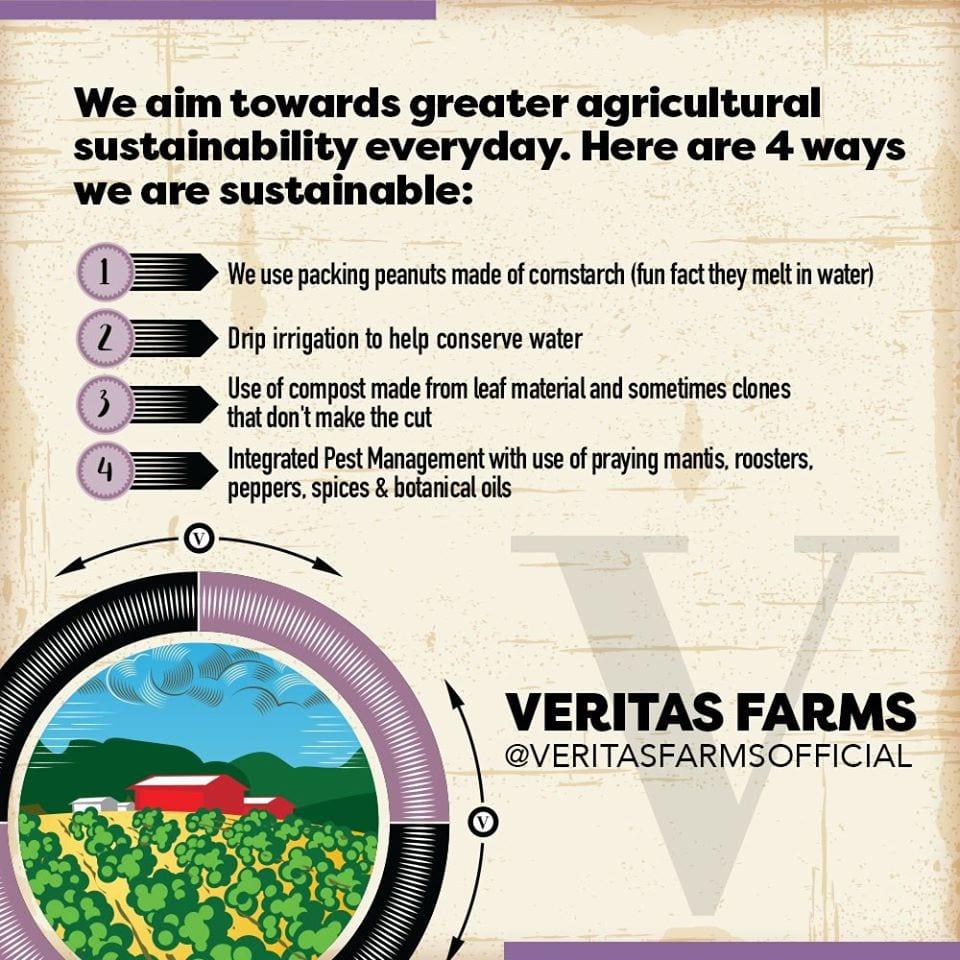 Veritas Sustainability